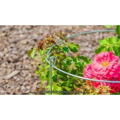 Podpora na kwiaty stalowa koło 35x60cm ELGarden
