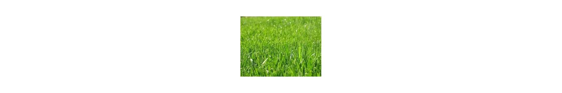 do trawy