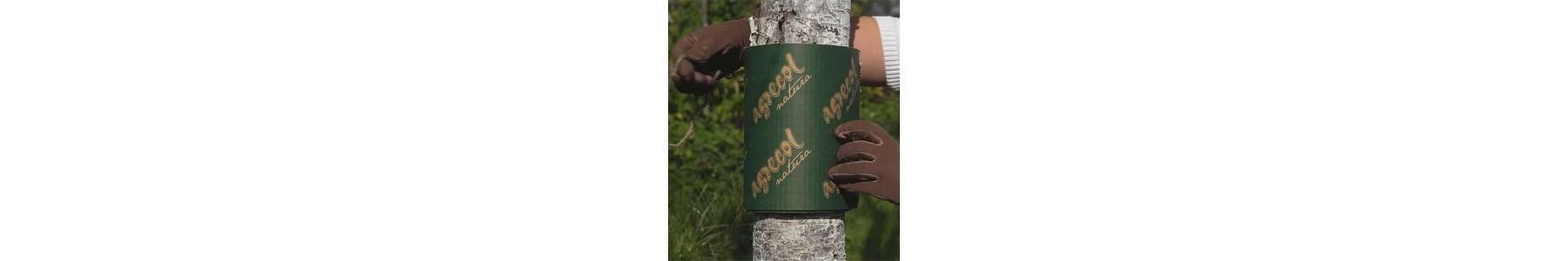 Ochrona pni drzew